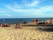 На берегу Азовского моря отдых и комфорт У деда Вити От 35 гривенчел