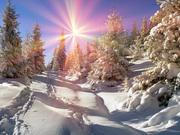 «Новогодняя Магия Закарпатья»